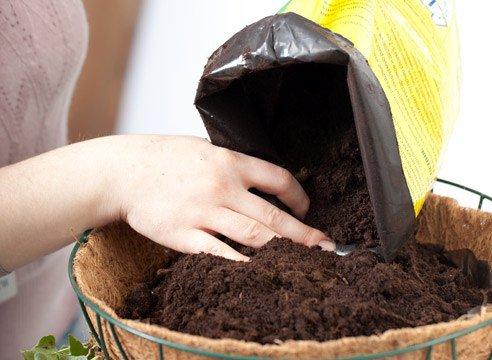 Как сделать домашний грунт для комнатных растений?