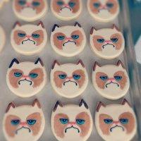 Как украсить печенье: Grumpy Cat