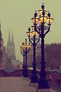 Что попробовать в Вене