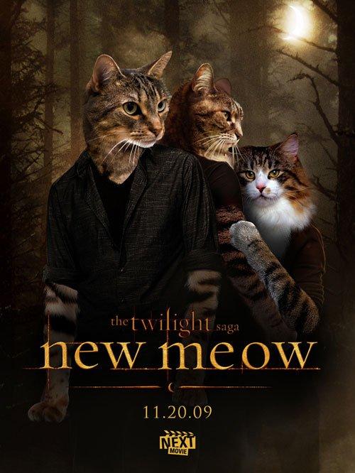 Если бы коты играли главные роли в кино