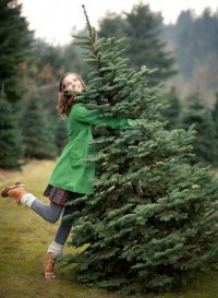 Как выбрать елку на Новый год?