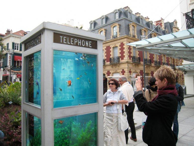 Телефонная будка-аквариум