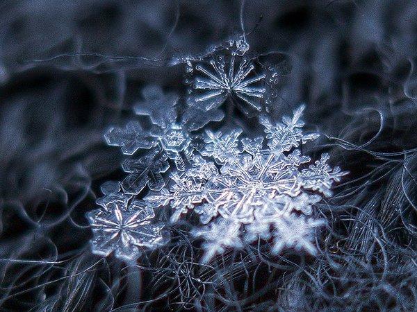 Снежинки Алексея Клятова