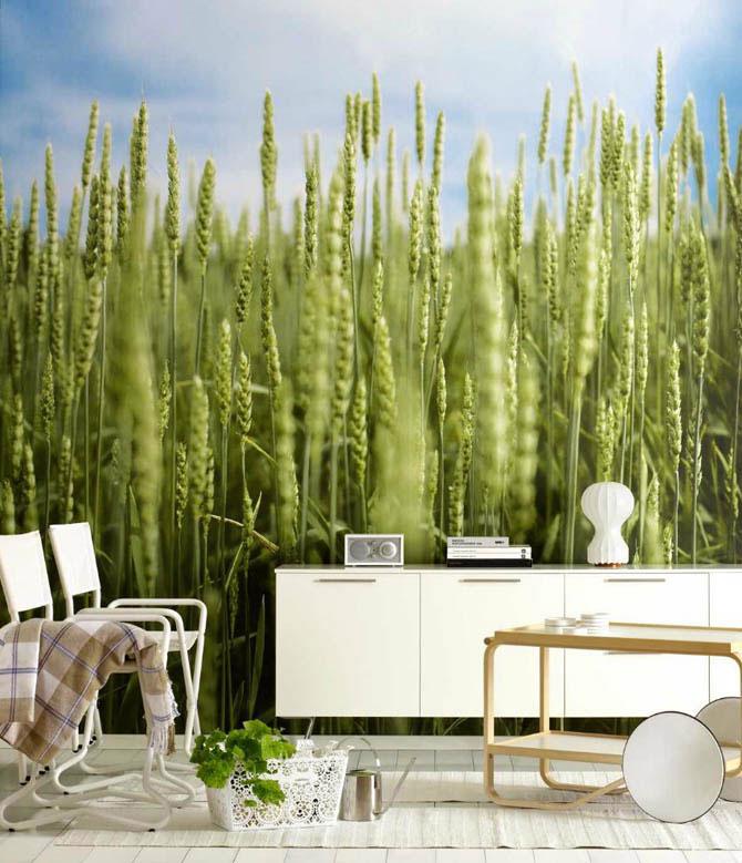 Экология квартиры: чистота