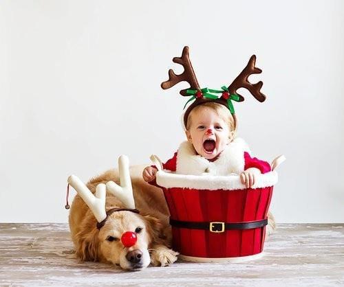 Породы собак, которые любят детей