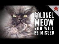 В память о Полковнике Мяу
