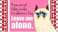Валентинка с Grumpy Cat