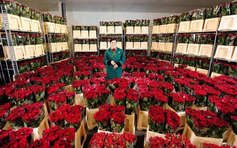 День святого Валентина в разных странах: Великобритания