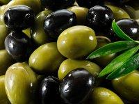 Какая разница между оливками и маслинами?