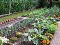 Полезные средства для сада