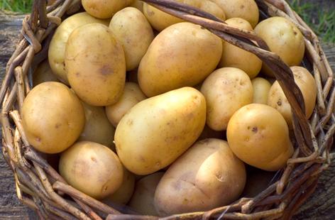 Как быстро сварить картофель