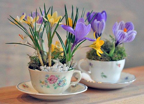 Идея подарка для бабушки на 8 Марта