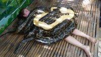 На Филиппинах туристам предлагают массаж змеями