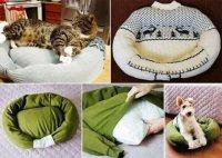 Как придумать подушку для питомца