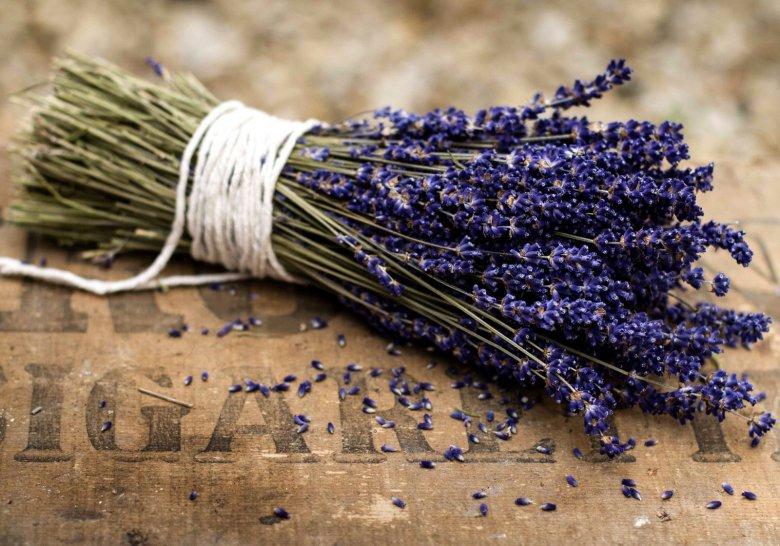 Лайфхак: что понюхать, чтобы снять стресс?