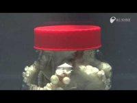 Что будет делать осьминог в банке?