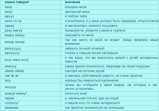Словарь кошачьего языка