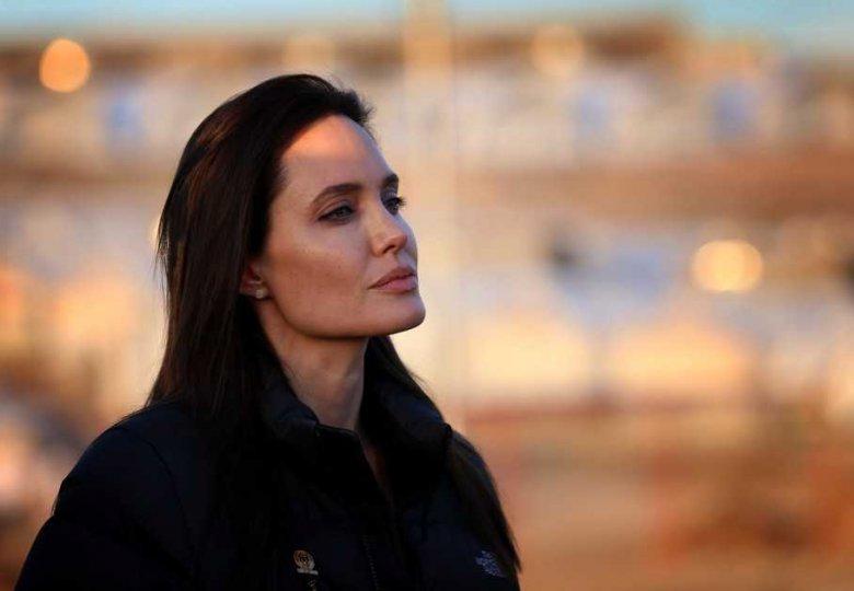 Поступки Анджелины Джоли подверглись критике ученых