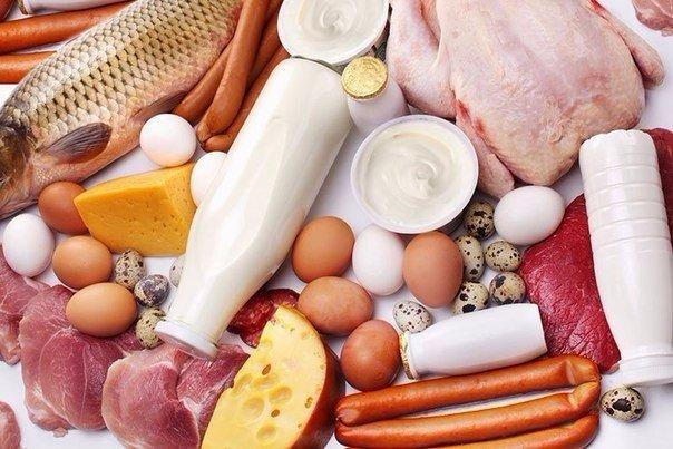 Самая сбалансированная белковая диета