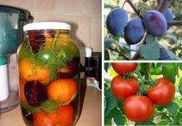 Консервированные помидоры со сливами