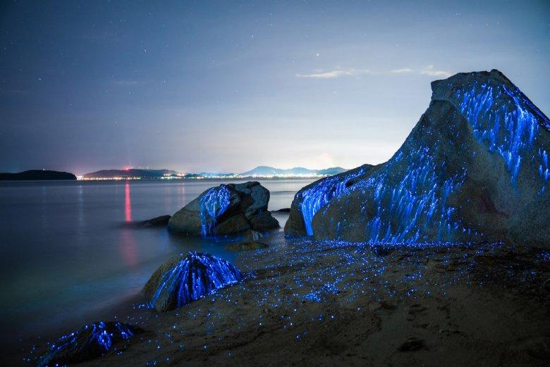 Светящиеся камни у японских берегов